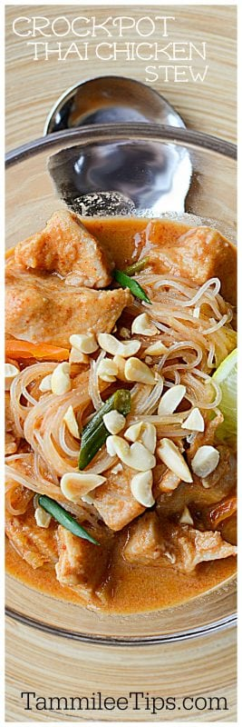 Easy Slow Cooker Crockpot Thai Chicken Stew Recipe is perfect for dinner. Makes great leftovers!