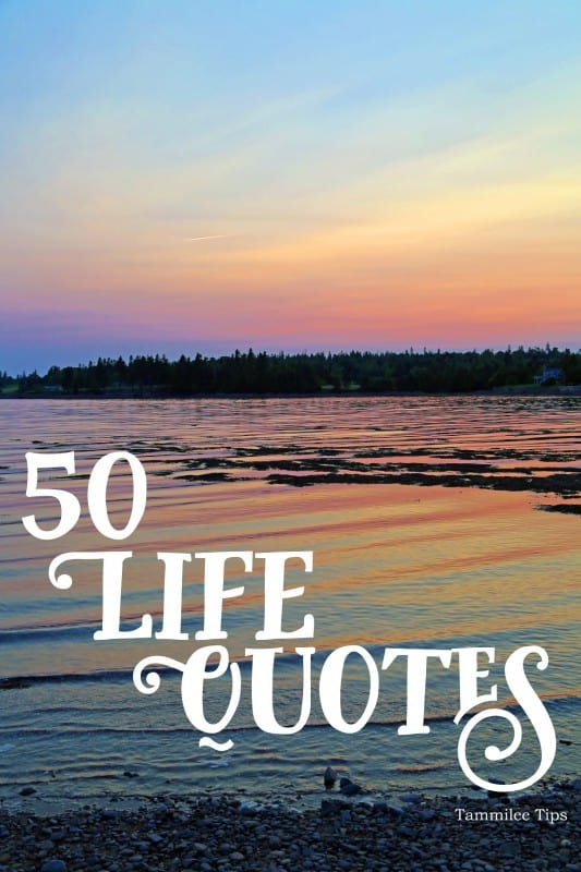 These 50 fun life quotes are inspiring, motivating and a lot of fun! Perfect for Instagram quotes, Facebook updates, life projects, journaling and so much more!