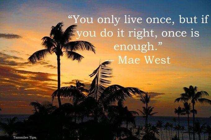 50 Fun Life Quotes