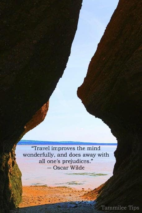Travel improves the mind