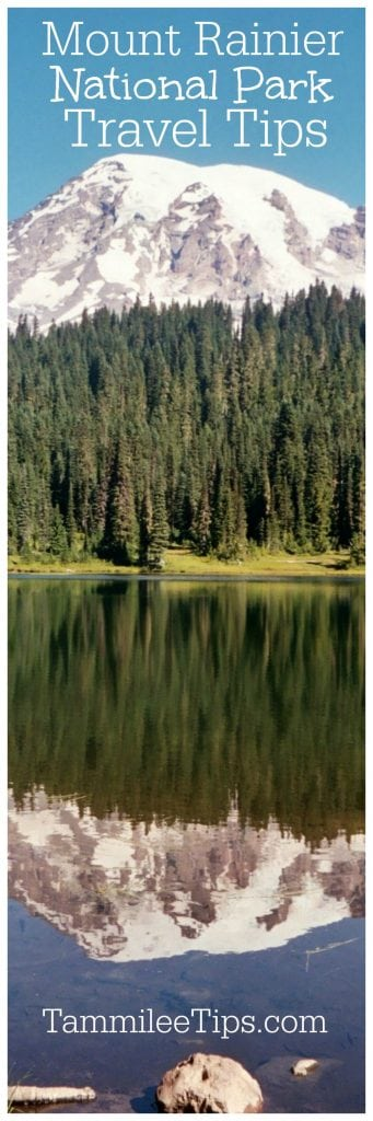 Mount Rainier National Park Travel Tips! Located in Washington, photography tips, trails, hikes, summer, wildflowers, things to do and more!