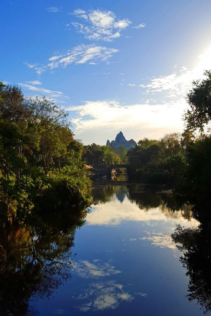 Walt Disney Animal Kingdom Park Tips, Todos, Pictures and more! Rides, Starbucks in the Animal Kingdom, and more at Walt Disney World Orlando Florida