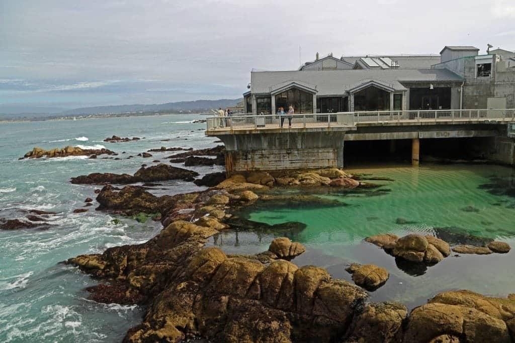 Visiting The Monterey Bay Aquarium Tammilee Tips