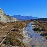 Salt Creek Interpretative Trail Death Valley National Park