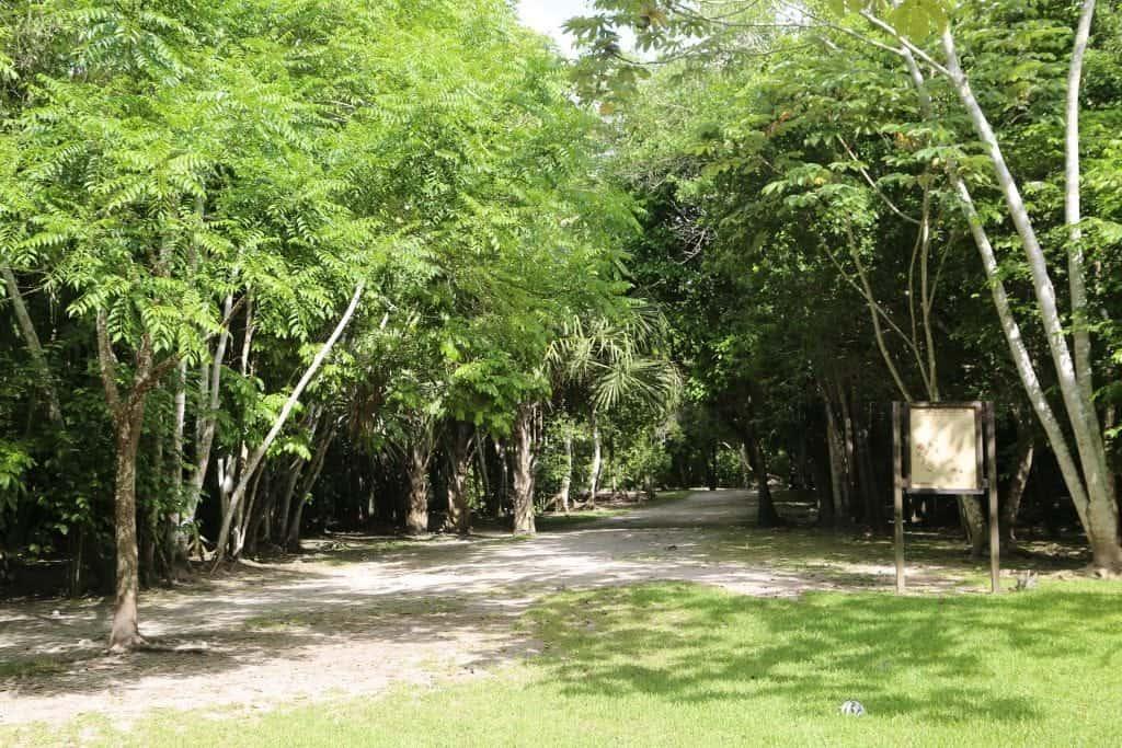 Chacchoben Mayan Ruins Excursion in Costa Maya, Mexico 5