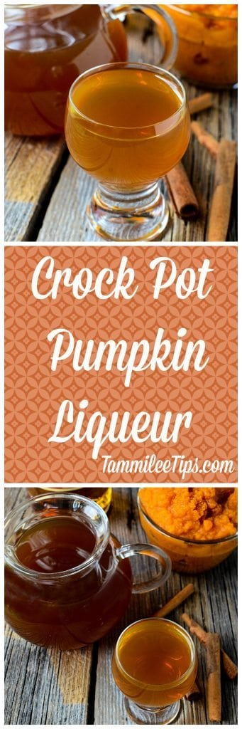 This Crock Pot Pumpkin Liqueur recipe is so easy to make in the slow cooker! The perfect way to make a boozy pumpkin spice latte or a martini.