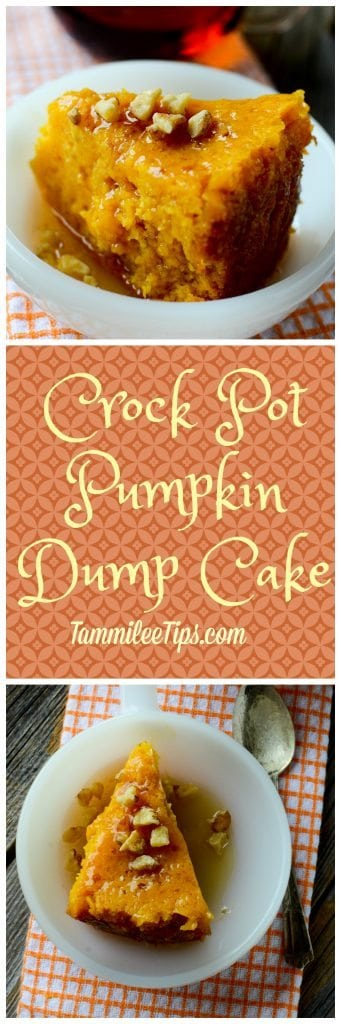 Dump Cake Recipes For Crock Pot