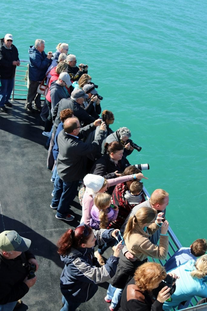 deck-of-boat-of-juneau-whale-watching-tour-carnival-legend