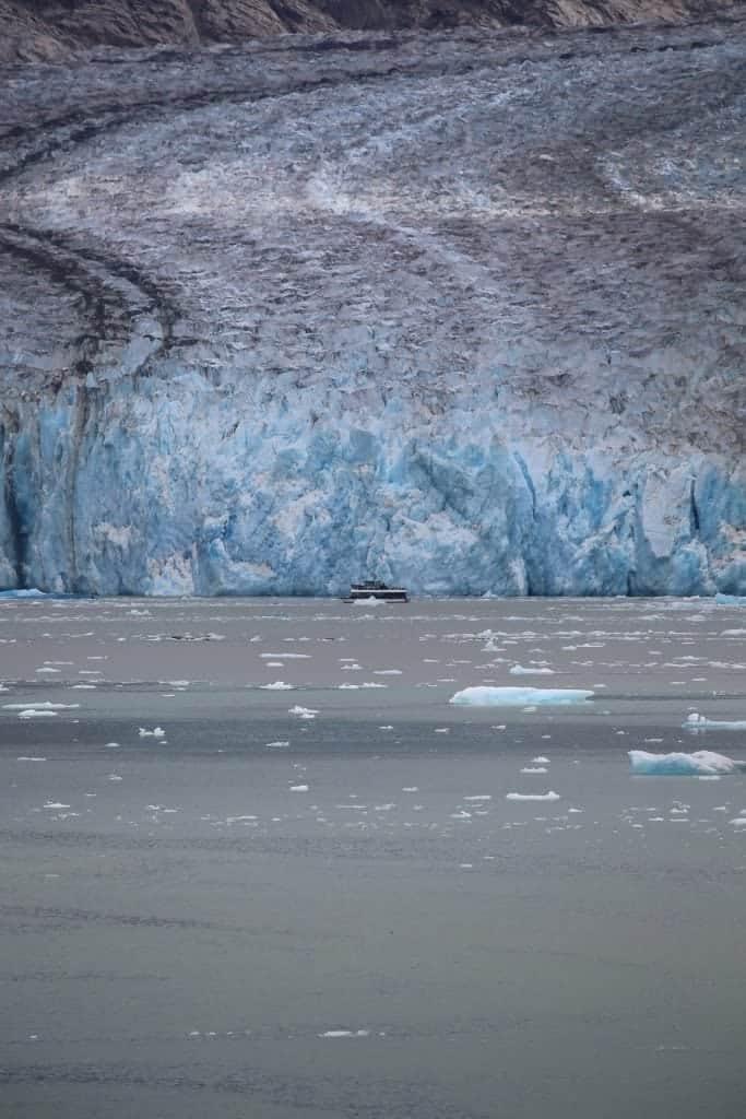 Glacier Excursion at Tracy Arm Fjord