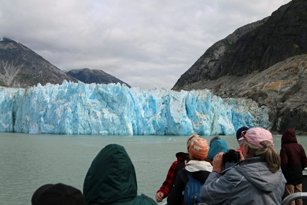 Glacier Tour in Tracy Arm Fjod