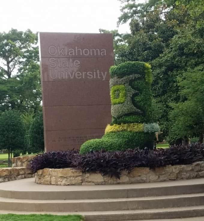 Oklahoma State University cowboy boot