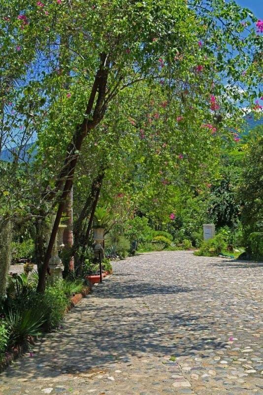 puerto-vallarta-botanical-gardens