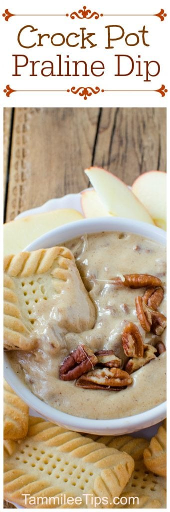 This Crock Pot Praline Dip recipe is the perfect dessert dip. Great for family dinner or a party. Trust me everyone will love this delicious slow cooker crockpot recipe!