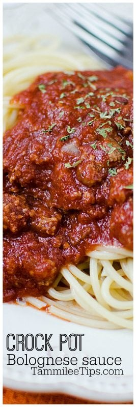 Easy Slow Cooker Crock Pot Bolognese sauce Recipe with beef perfect for pasta family dinner. So easy to make! Comfort Food! #crockpot #slowcooker #pasta #bolognese